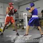 """Kick-boxing: sabato sera """"Pinerolo fight night"""""""