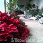 Mercatino di Natale al Castello di Miradolo da domenica 6