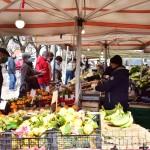 Pinerolo: mercoledì 2 giugno ci sarà il mercato