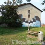 Verde urbano a Pinerolo: il quotidiano che ti sorprende