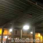 Vento a Pinerolo: due platani caduti e danni alla tettoia del mercato