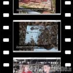 Concorso studenti: Videomaker in erba