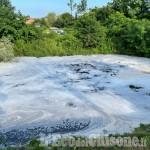 Piobesi-Vinovo: moria di pesci e inquietanti schiume colorate nel rio Essa