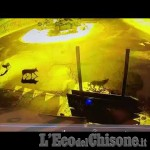 Embedded thumbnail for Pragelato: branco di lupi alla rotonda di Plan in Val Troncea