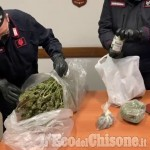 Embedded thumbnail for Cumiana: il video della marijuana sequestrata