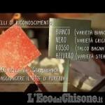 """Embedded thumbnail for Scervelliamoci Ottobre 2018: il talco, """"Tenero come roccia"""""""