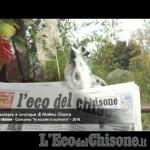 Embedded thumbnail for L'Eco del Chisone sempre e ovunque di Matteo Gianre